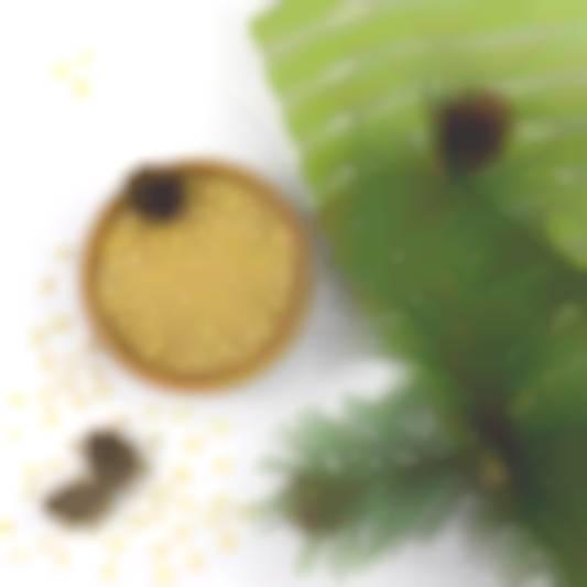 kedrovi-gorikhi-ochischeni